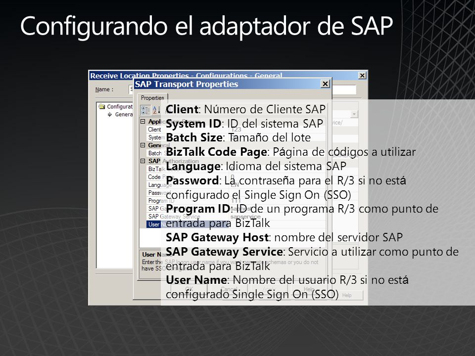 Configurando el adaptador de SAP