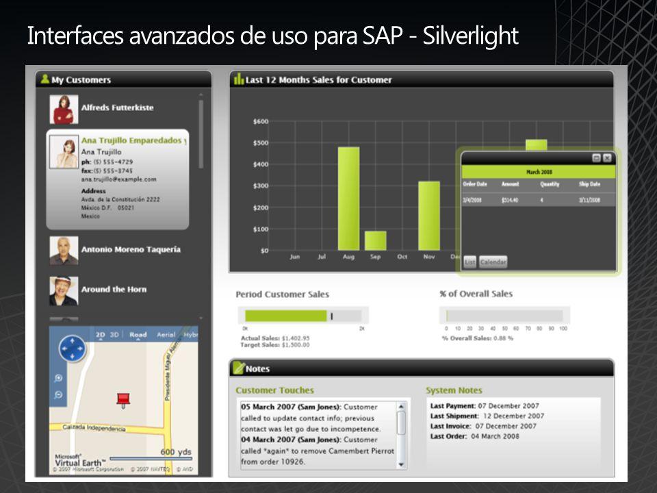 Interfaces avanzados de uso para SAP - Silverlight