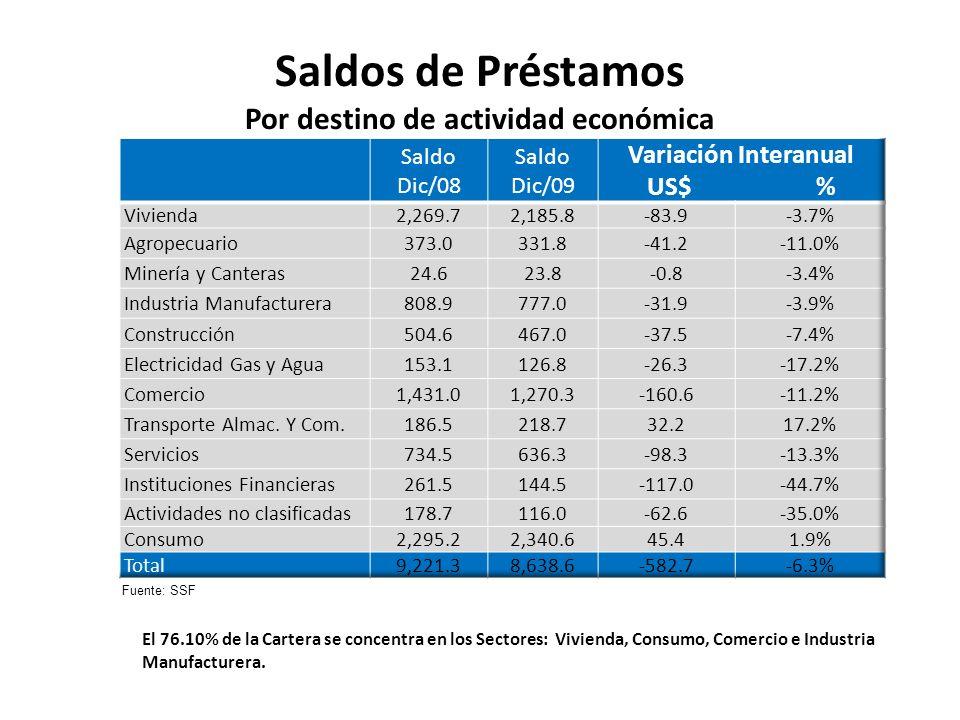 Saldos de Préstamos Por destino de actividad económica