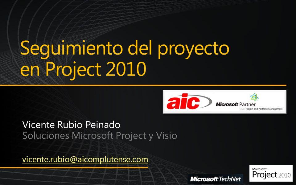 Seguimiento del proyecto en Project 2010