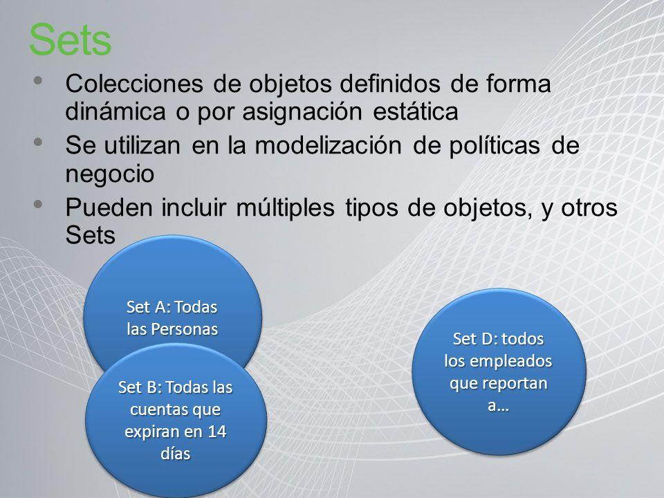 Sets Colecciones de objetos definidos de forma dinámica o por asignación estática. Se utilizan en la modelización de políticas de negocio.