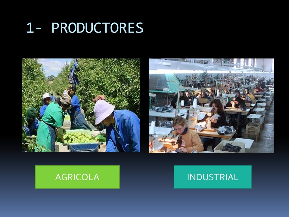 1- PRODUCTORES AGRICOLA INDUSTRIAL