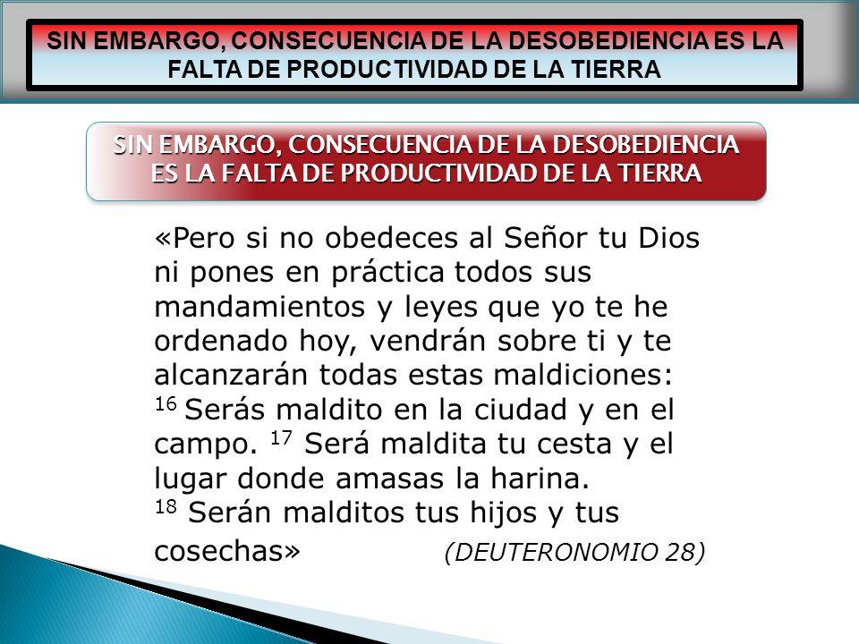 «Pero si no obedeces al Señor tu Dios
