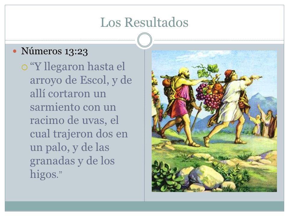Los Resultados Números 13:23.