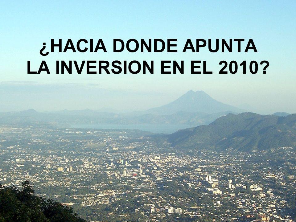 ¿HACIA DONDE APUNTA LA INVERSION EN EL 2010