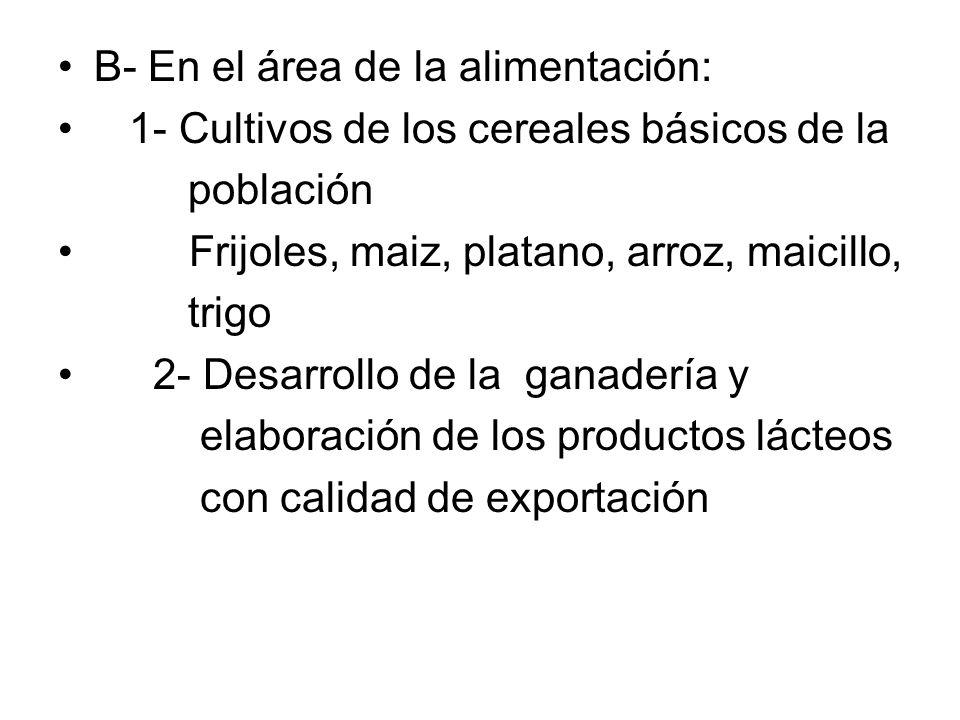 B- En el área de la alimentación: