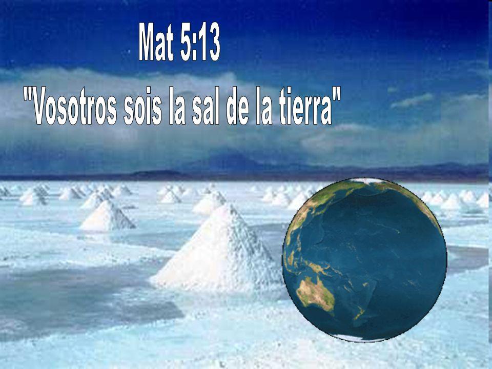 Vosotros sois la sal de la tierra