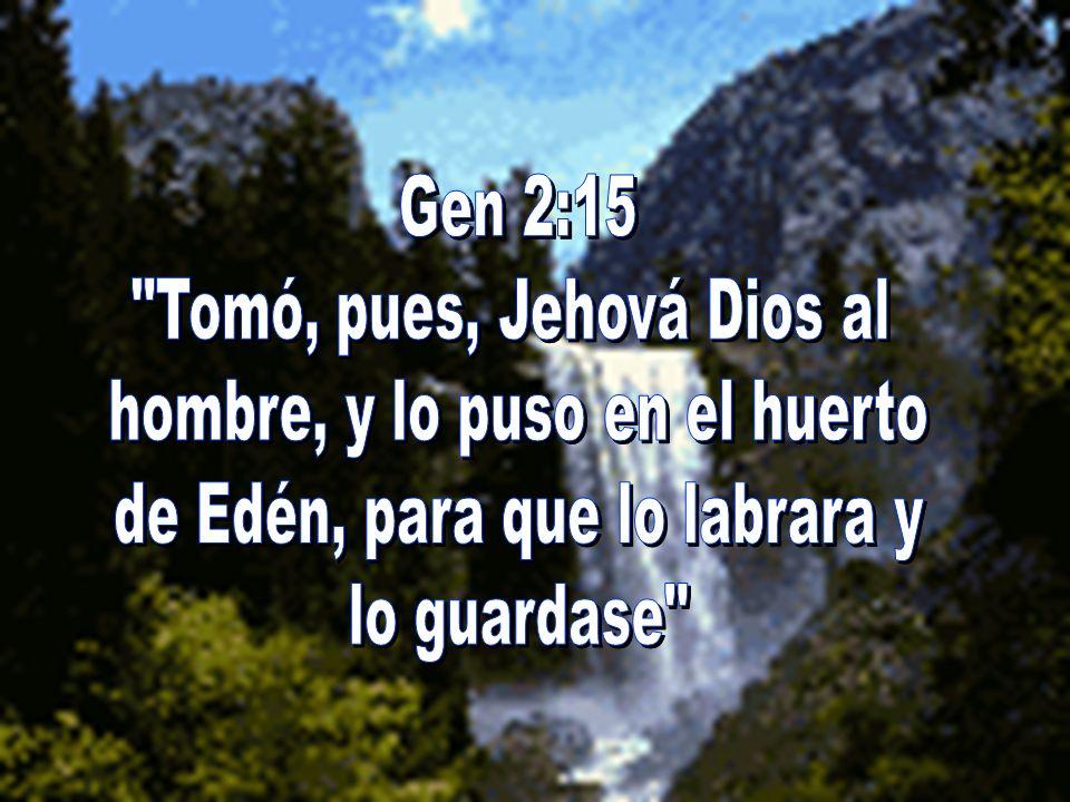 Tomó, pues, Jehová Dios al hombre, y lo puso en el huerto