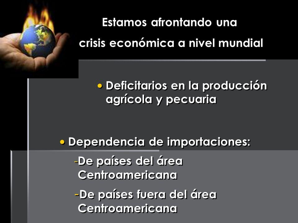 Estamos afrontando una crisis económica a nivel mundial