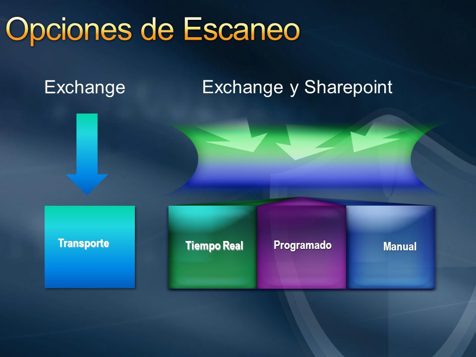 Opciones de Escaneo Exchange Exchange y Sharepoint Transporte