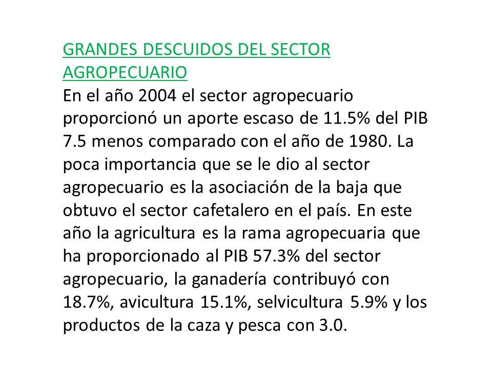 GRANDES DESCUIDOS DEL SECTOR AGROPECUARIO