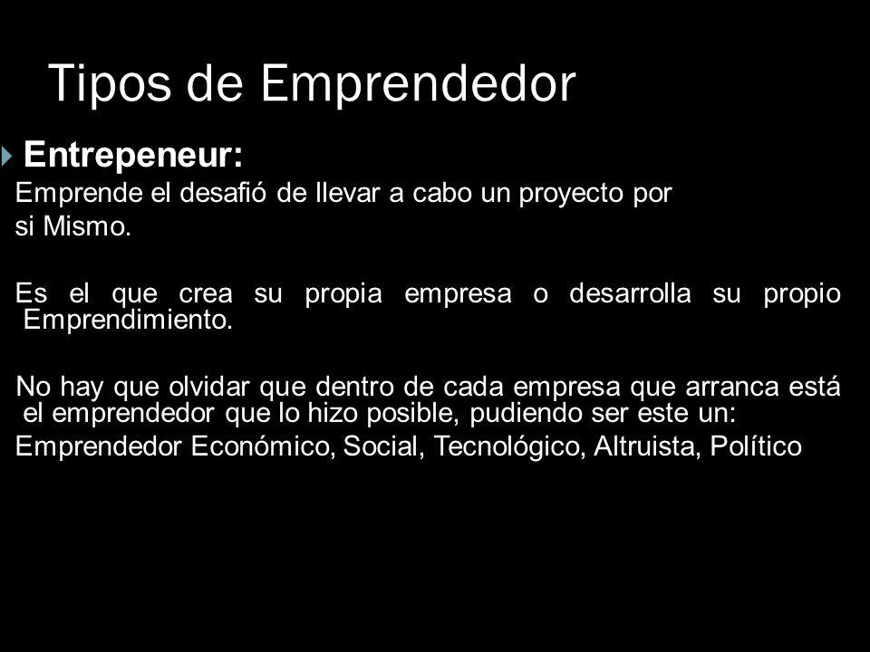 Tipos de Emprendedor Entrepeneur:
