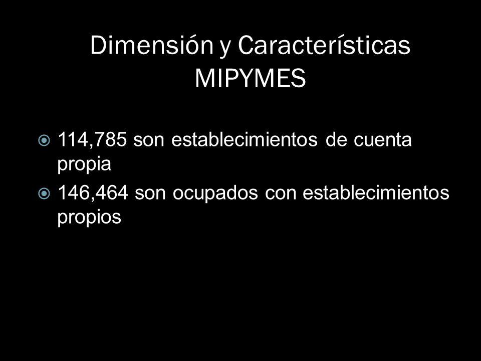 Dimensión y Características MIPYMES