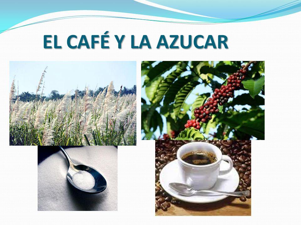EL CAFÉ Y LA AZUCAR