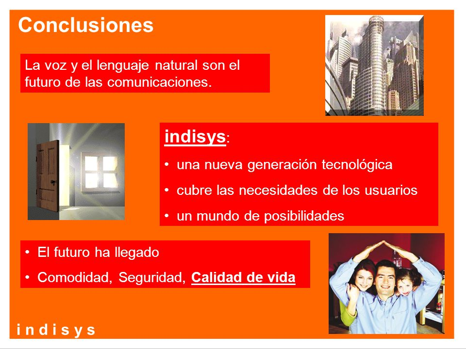 Conclusiones indisys: i n d i s y s