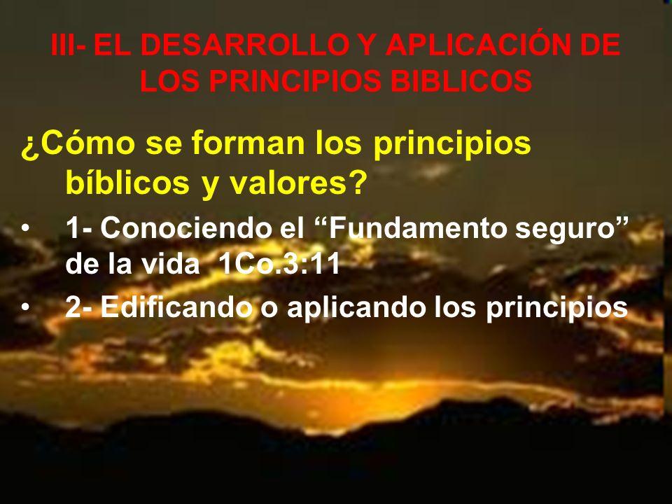 III- EL DESARROLLO Y APLICACIÓN DE LOS PRINCIPIOS BIBLICOS