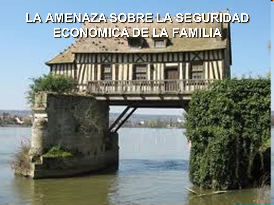 LA AMENAZA SOBRE LA SEGURIDAD ECONOMICA DE LA FAMILIA