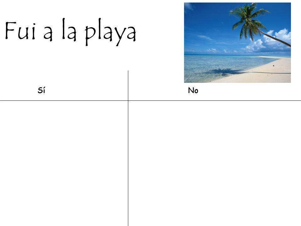 Fui a la playa Sí No