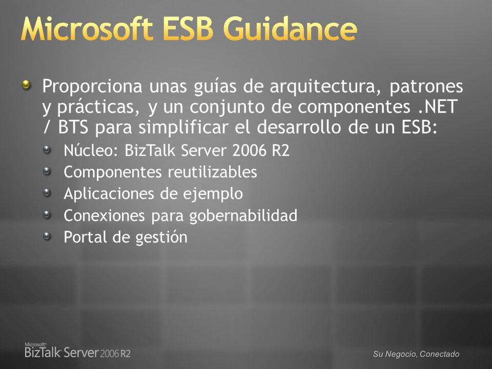 Microsoft ESB Guidance