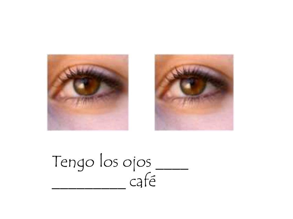 Tengo los ojos ____ _________ café