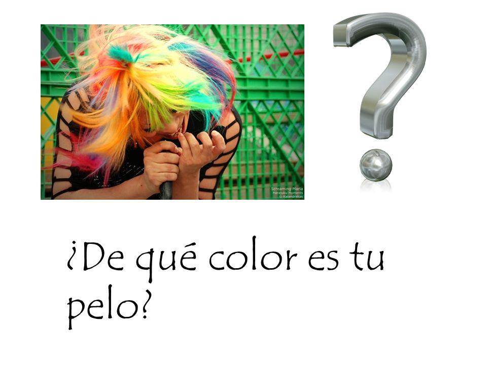 ¿De qué color es tu pelo