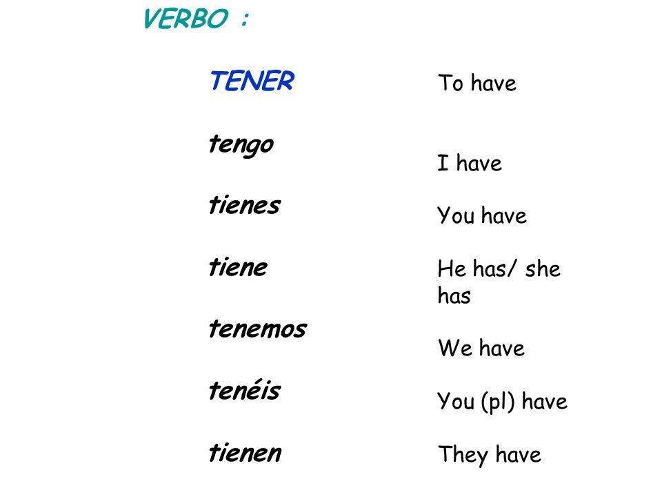 VERBO : TENER tengo tienes tiene tenemos tenéis tienen To have I have