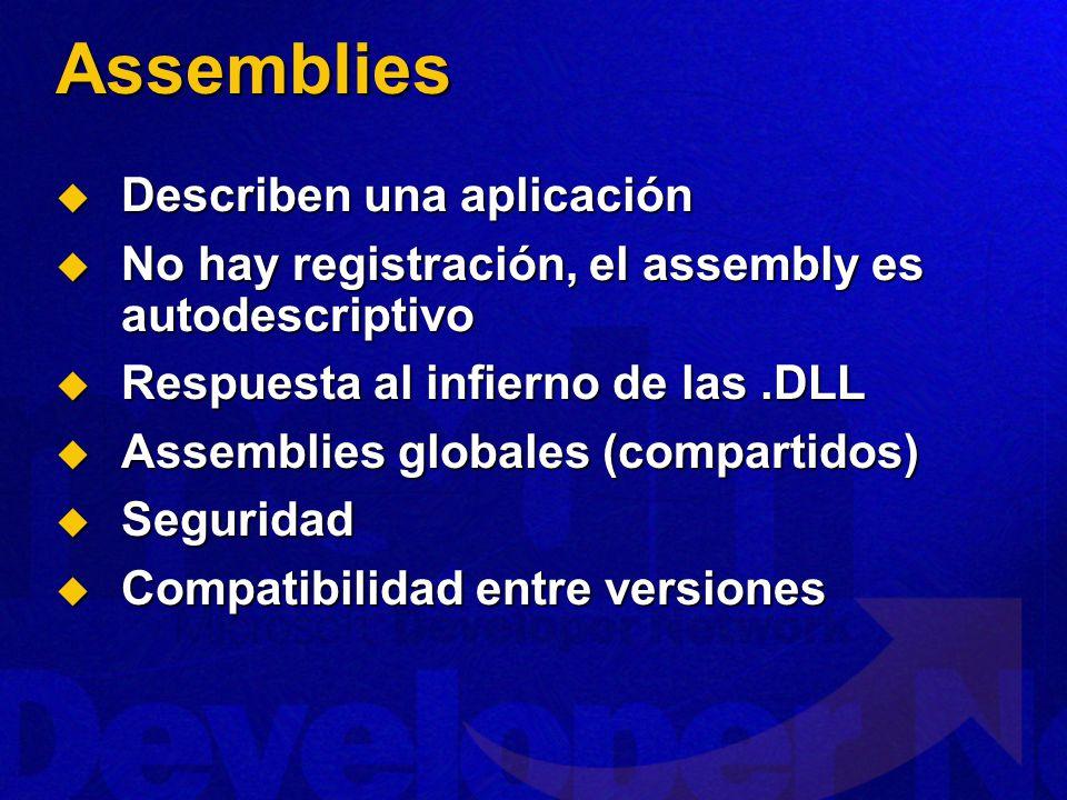 Assemblies Describen una aplicación
