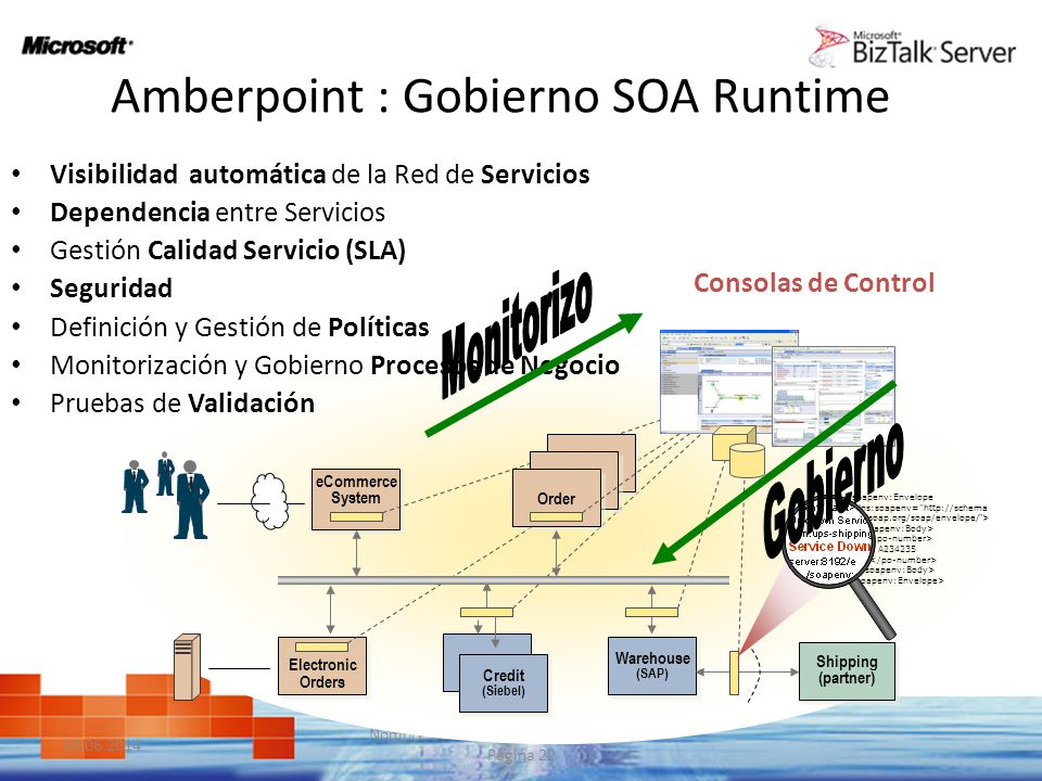 Amberpoint : Gobierno SOA Runtime