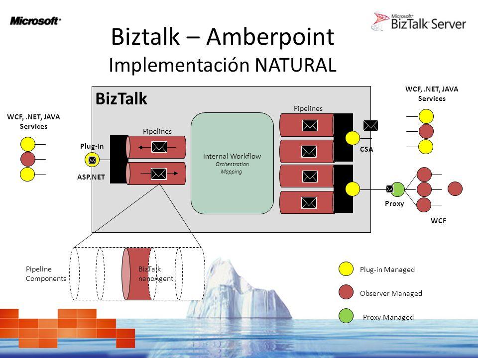 Biztalk – Amberpoint Implementación NATURAL