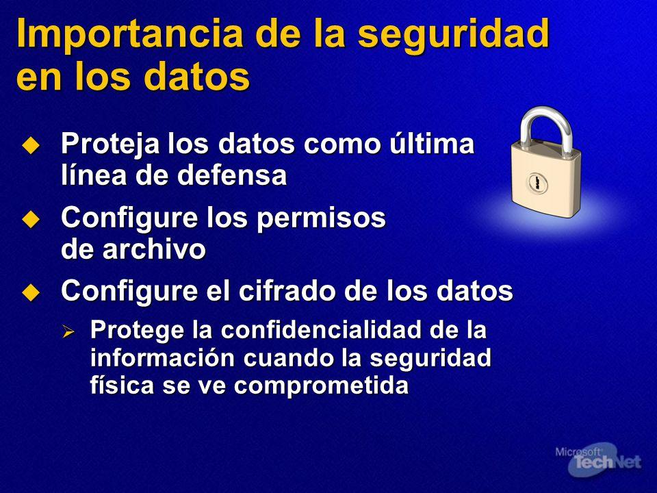 Importancia de la seguridad en los datos