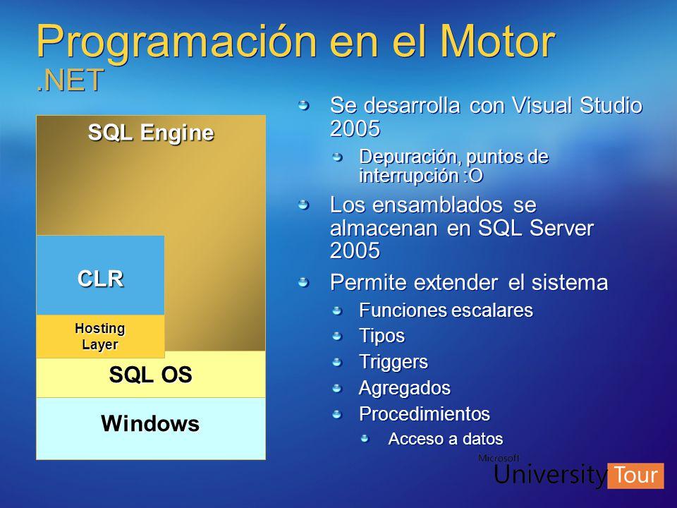 Programación en el Motor .NET