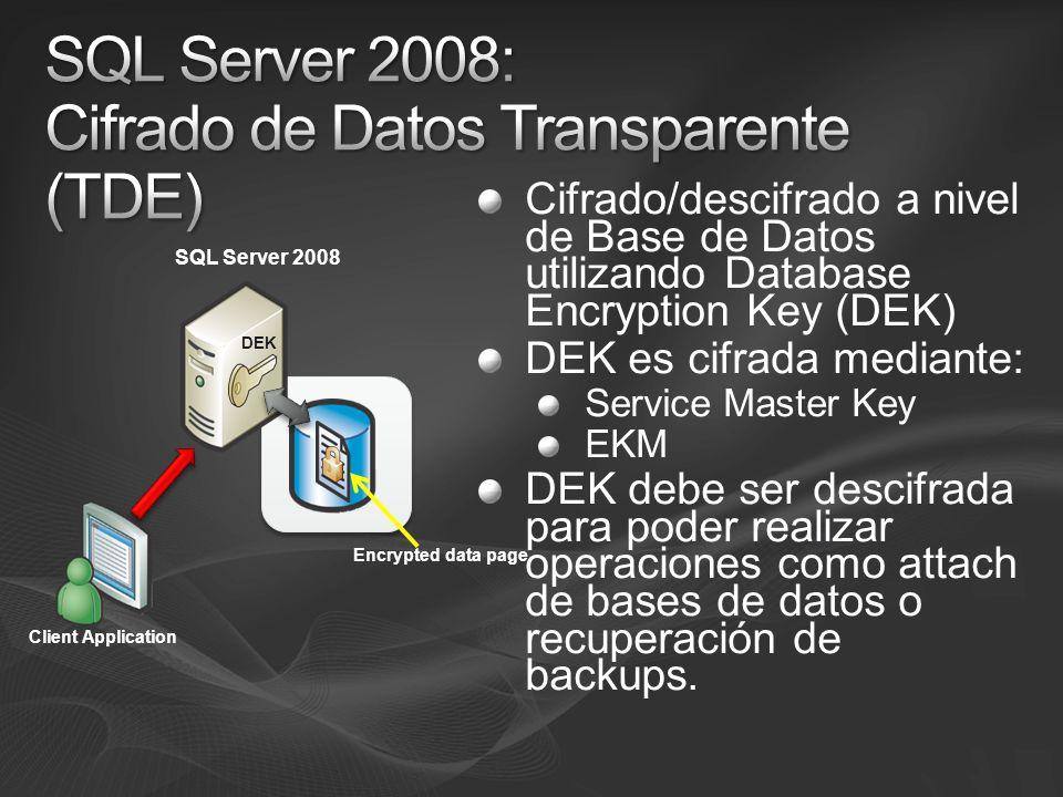 SQL Server 2008: Cifrado de Datos Transparente (TDE)