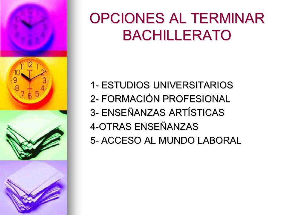 OPCIONES AL TERMINAR BACHILLERATO