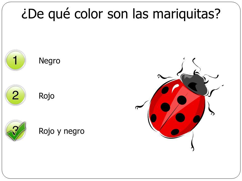 ¿De qué color son las mariquitas