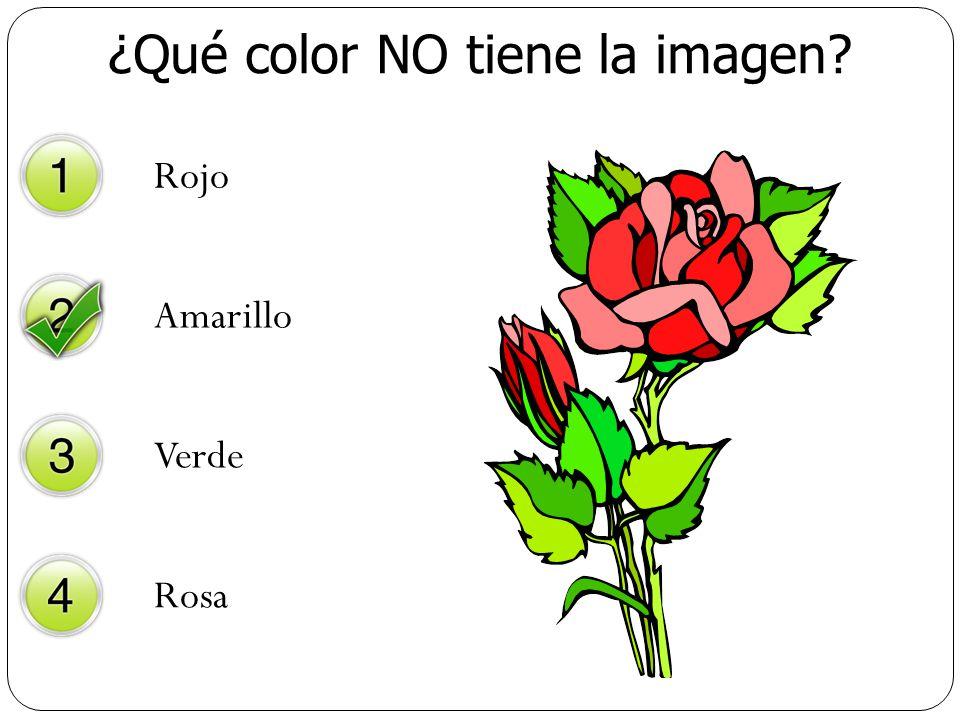 ¿Qué color NO tiene la imagen