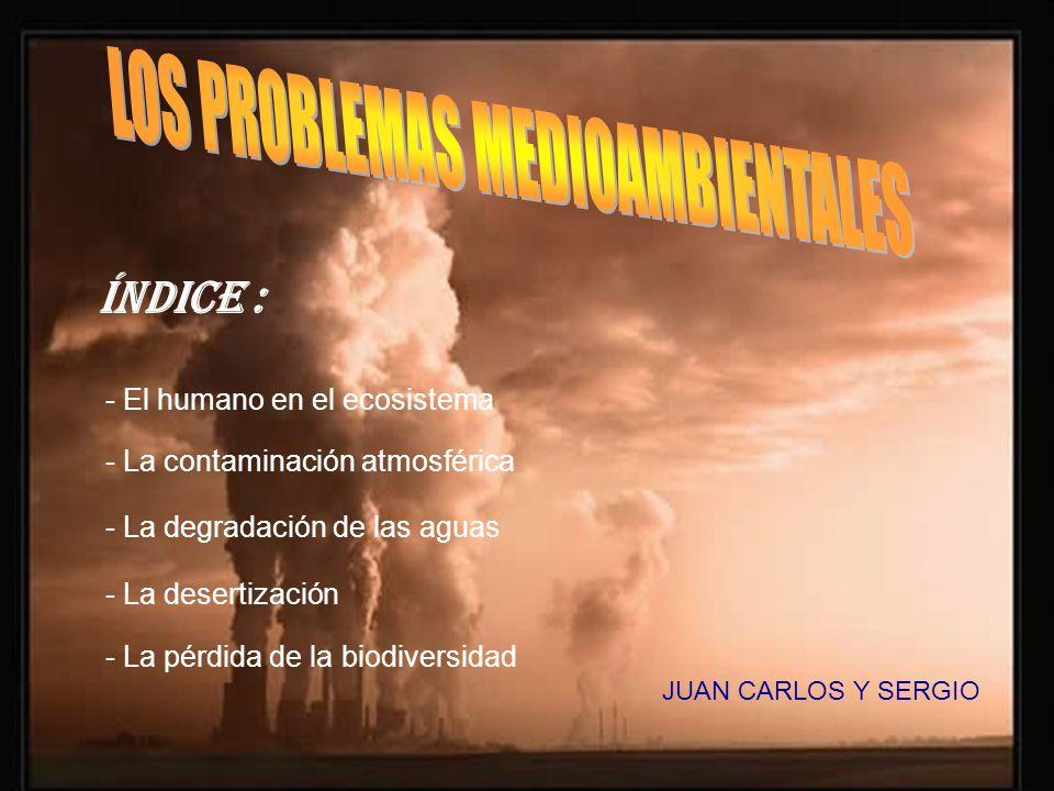 LOS PROBLEMAS MEDIOAMBIENTALES