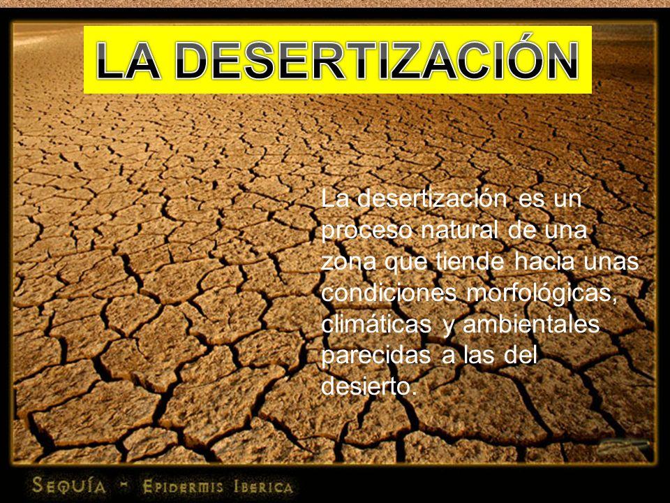 LA DESERTIZACIÓN La desertización es un proceso natural de una zona que tiende hacia unas condiciones morfológicas,