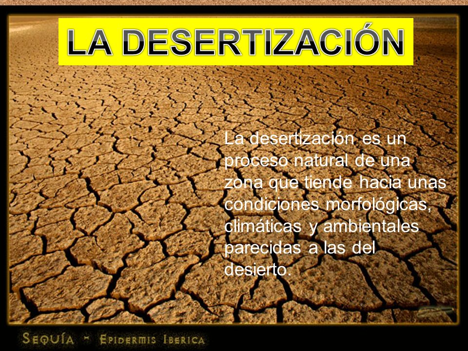 LA DESERTIZACIÓNLa desertización es un proceso natural de una zona que tiende hacia unas condiciones morfológicas,