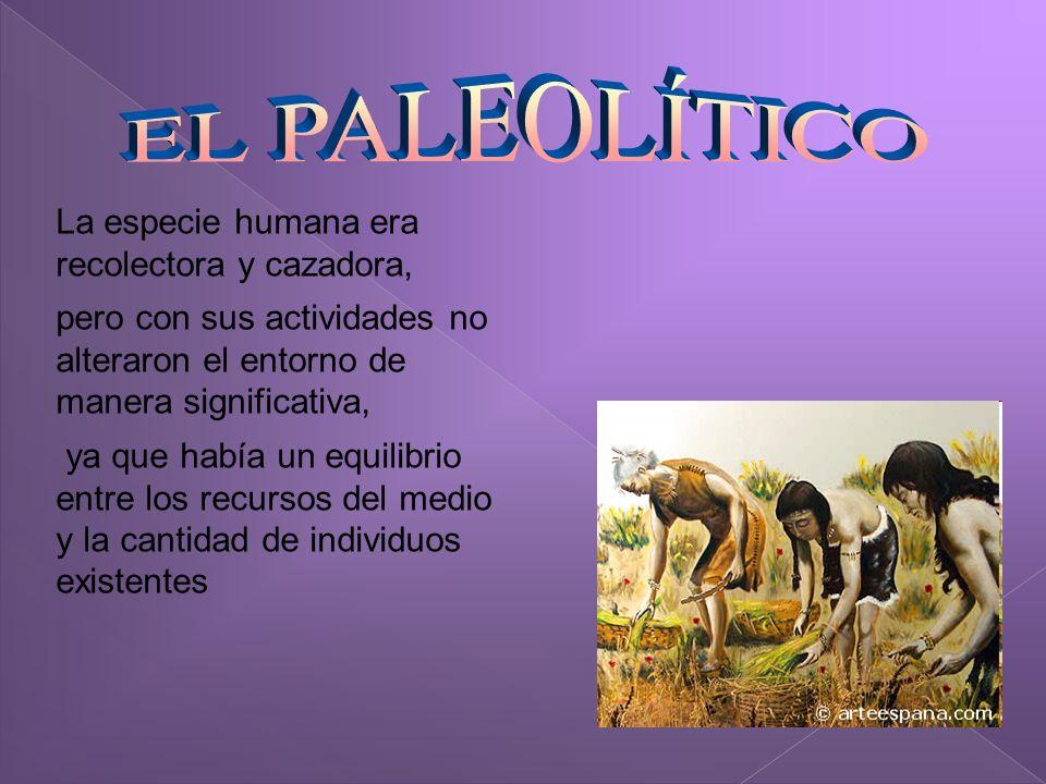 EL PALEOLÍTICO La especie humana era recolectora y cazadora,