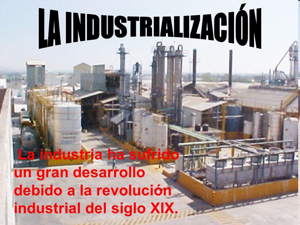 LA INDUSTRIALIZACIÓN La industria ha sufrido un gran desarrollo debido a la revolución industrial del siglo XIX.