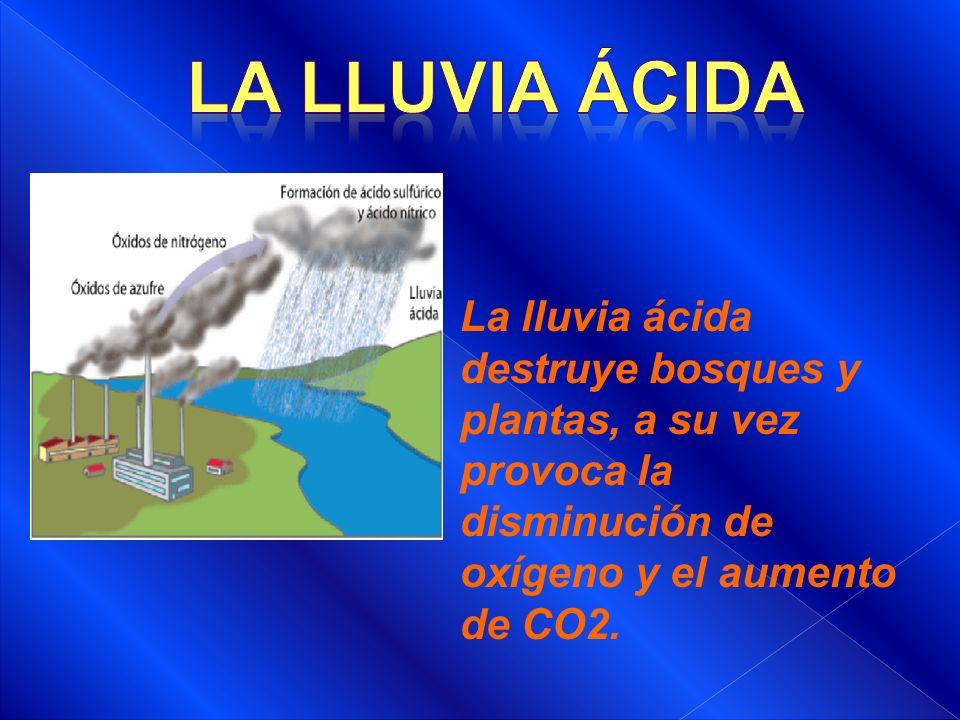 LA LLUVIA ÁCIDA La lluvia ácida destruye bosques y plantas, a su vez provoca la disminución de oxígeno y el aumento de CO2.