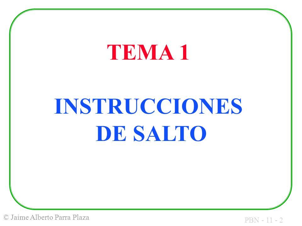TEMA 1 INSTRUCCIONES DE SALTO