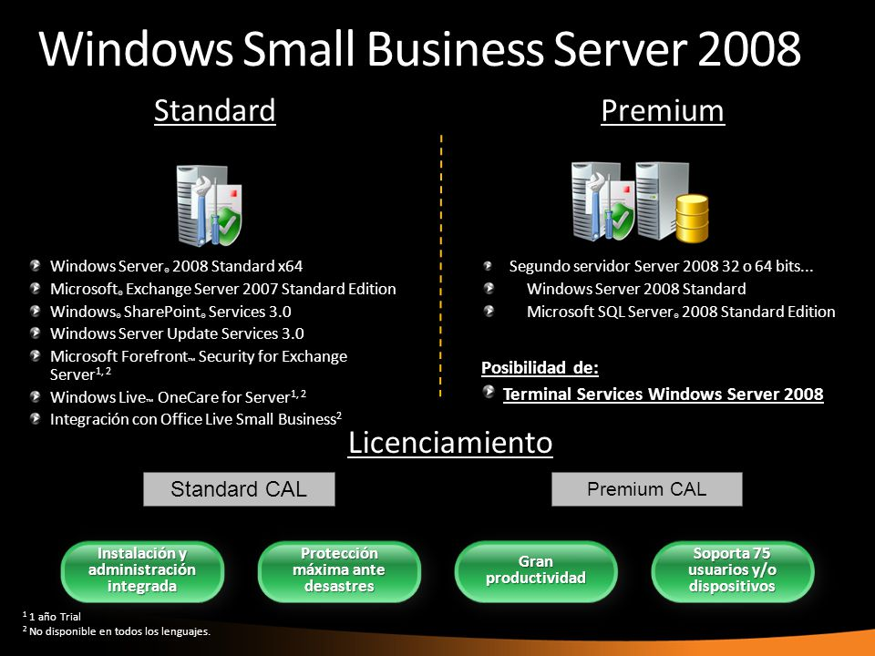 Windows Small Business Server 2008