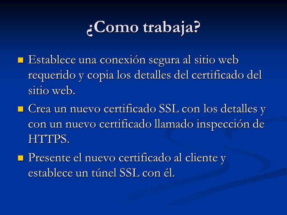 ¿Como trabaja Establece una conexión segura al sitio web requerido y copia los detalles del certificado del sitio web.