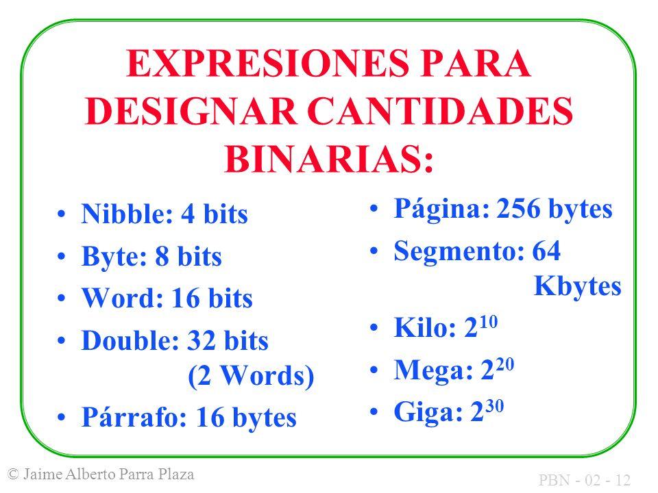 EXPRESIONES PARA DESIGNAR CANTIDADES BINARIAS:
