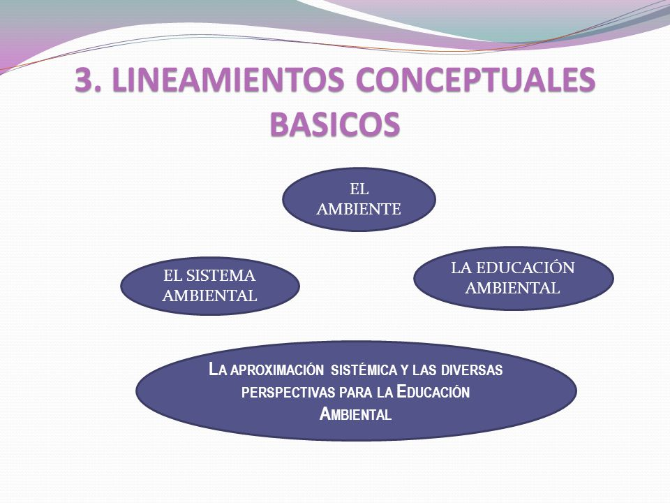 3. LINEAMIENTOS CONCEPTUALES BASICOS