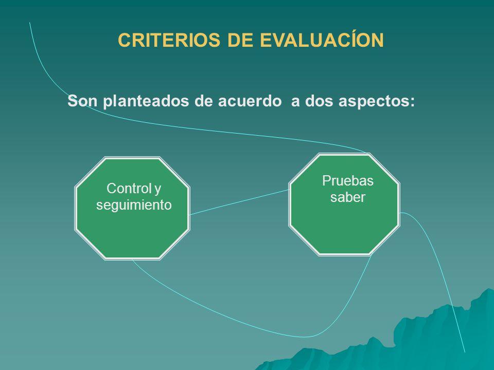 CRITERIOS DE EVALUACÍON Son planteados de acuerdo a dos aspectos: