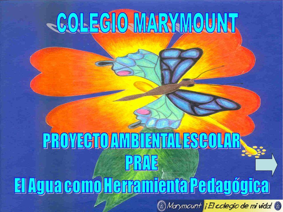 PROYECTO AMBIENTAL ESCOLAR El Agua como Herramienta Pedagógica
