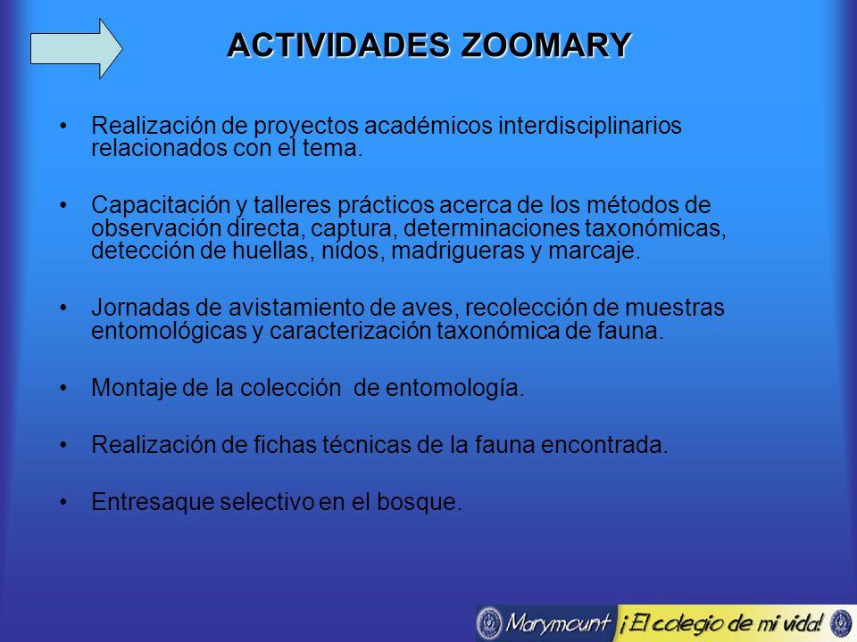ACTIVIDADES ZOOMARY Realización de proyectos académicos interdisciplinarios relacionados con el tema.