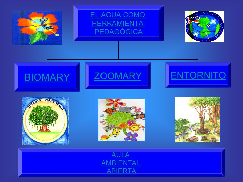 A partir del macroproyecto el agua como herramienta pedagógica, empezaron a trabajarse los proyectos de biomary, zoomary y entornito.